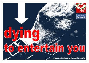 Dying to Entertain You Poster