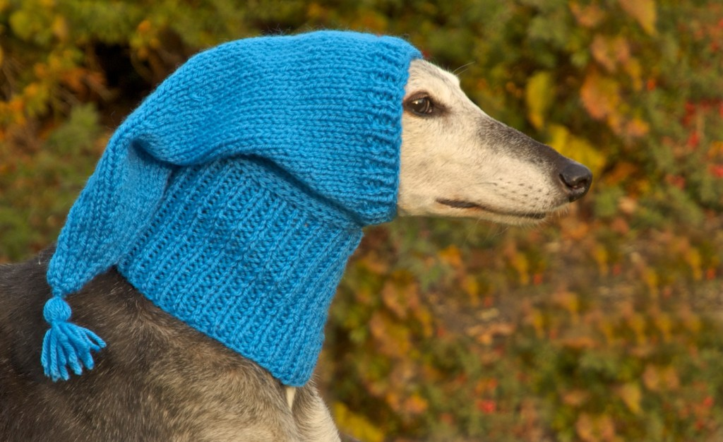 Greyhound Pixie hat with end tassel | Action for Greyhounds